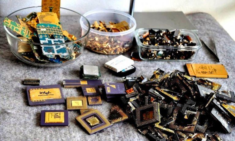 представления каноны золото в компьютере фото медоносное растение