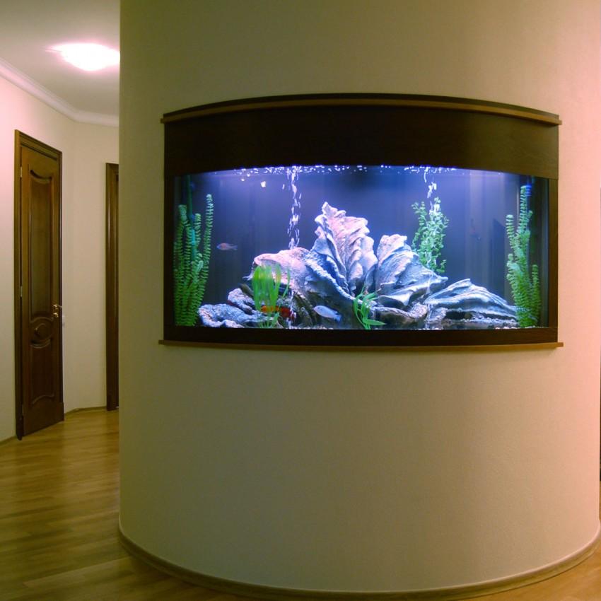 Картинки в виде аквариума